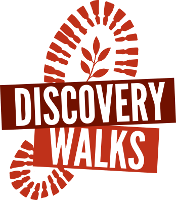 DiscoveryWalks_Logo